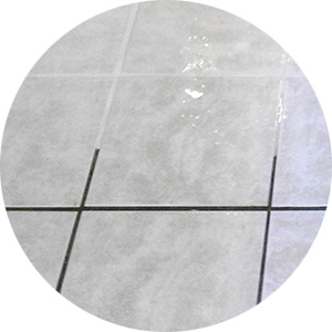 tile grout cleaning sunny state